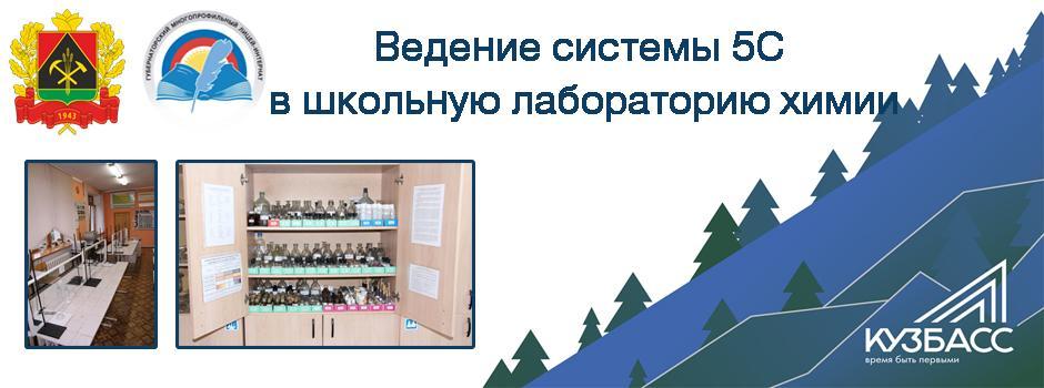 Введение системы 5С в школьную лабораторию химии